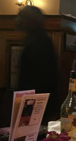 Tavern Ghost2